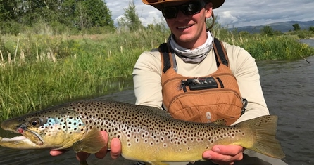Utah Trout Streams Fly Fishing Wilderness Trout Expeditions